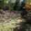 Zoom sur un Refuge LPO d'Occitanie : un magnifique terrain labellisé en Aveyron