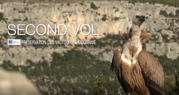 Second vol, préservons les vautours d'Occitanie!